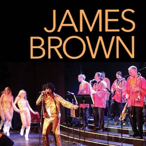 James Brown – The James Brown Experience