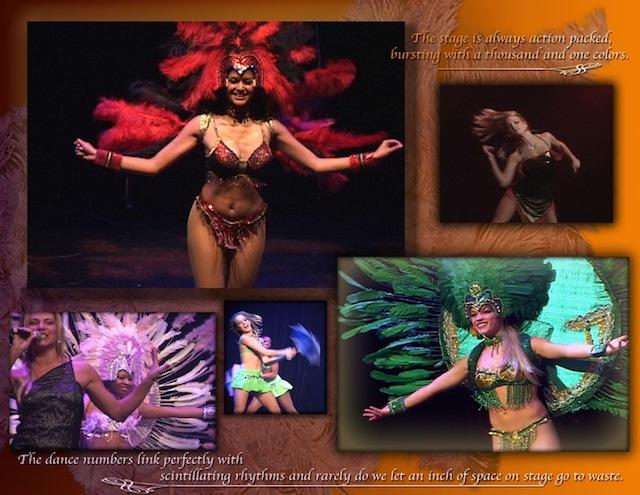 Rio Carnival 14
