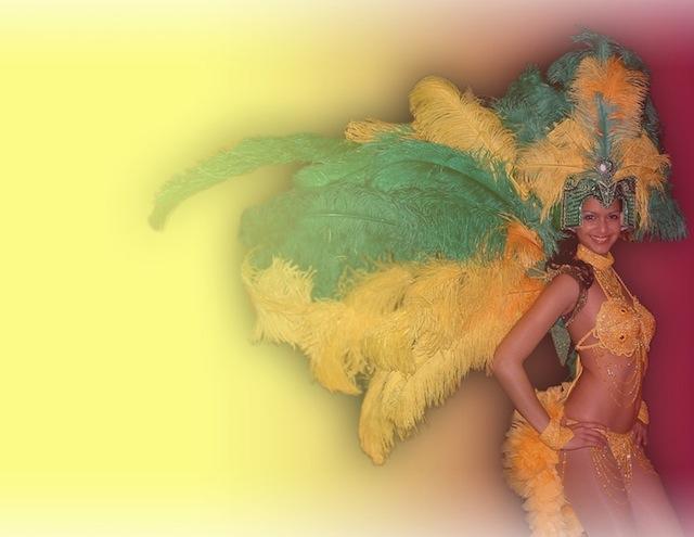 Rio Carnival 9