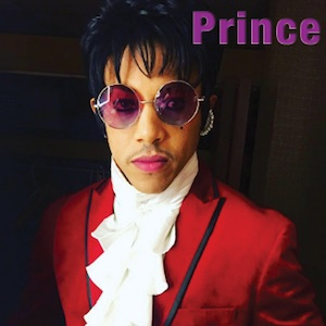 Prince – The Prince Purple Madness Tribute Show