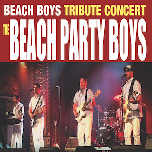 Beach Boys – Beach Party Boys